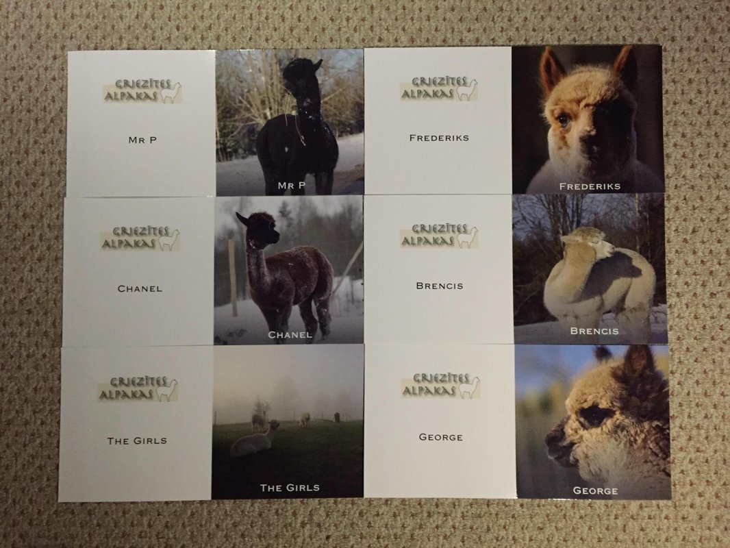 A set of six cards - winter collection